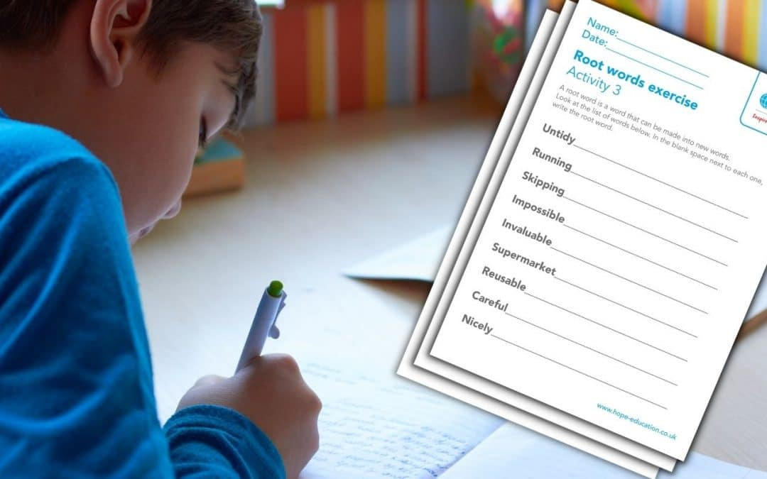 Prefix, suffixes and root words: A worksheet pack