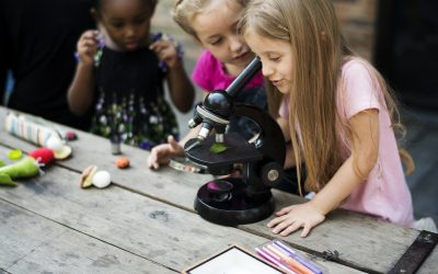 Teaching science outdoors: 21 projects, activities and experiments