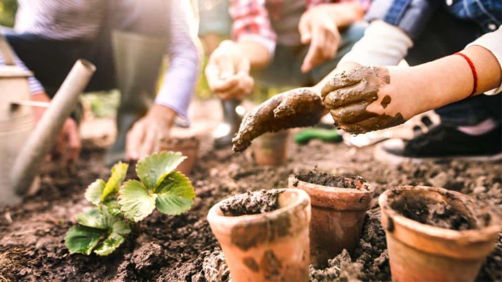 41 fun garden activities and ideas for kids